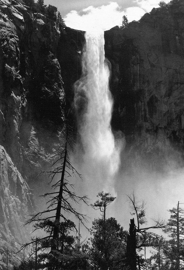 Черно-белые открытки природа