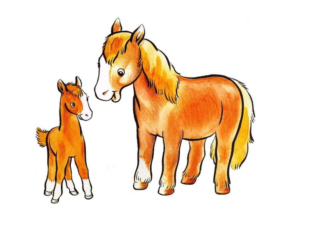 Открытку, картинки животные с детенышами для детского сада
