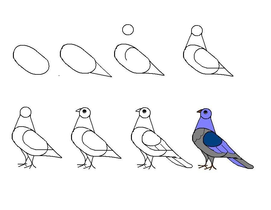 Картинки птиц для рисования