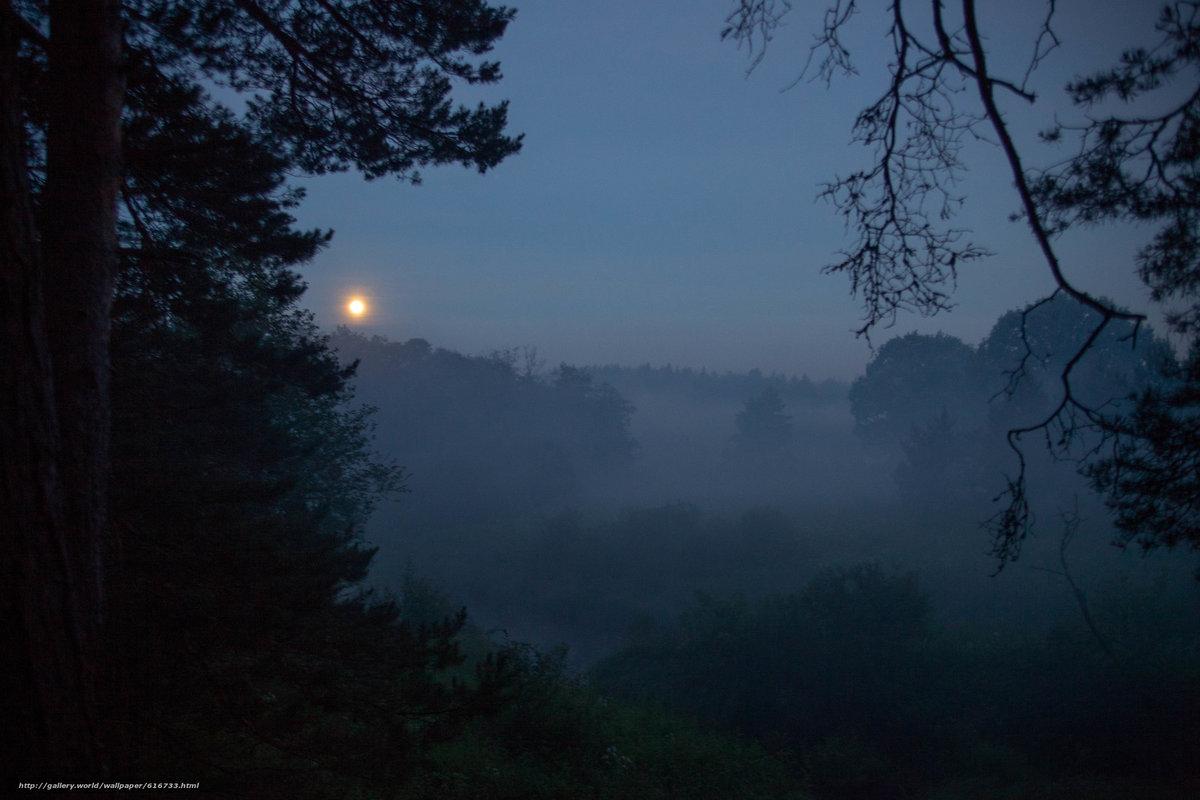 вера сказку фото туманная ночь в россии подробно расскажет