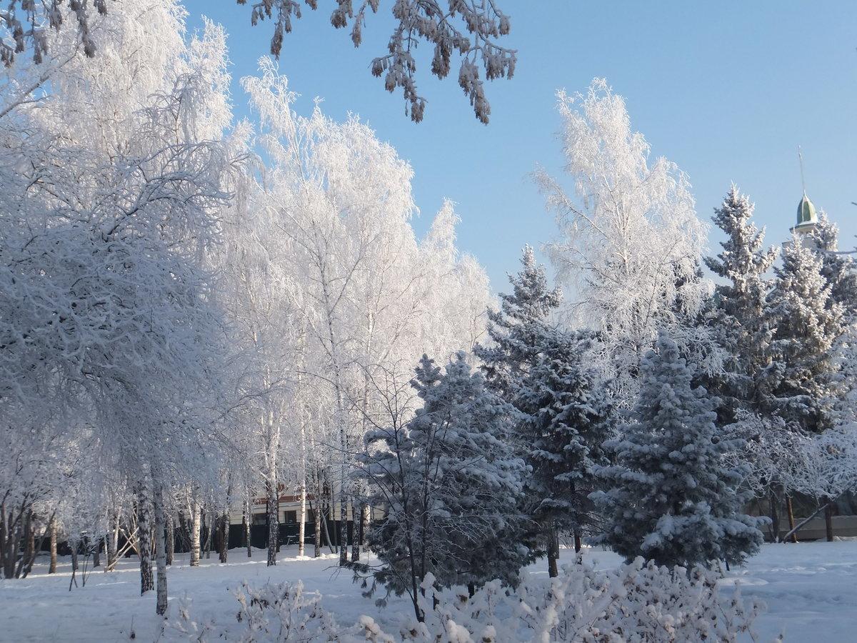 оценочную компанию снежный новосибирск фото двух