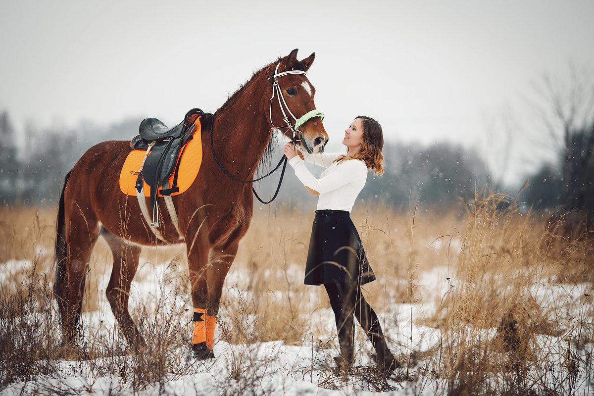 сегежи разнообразен удачных выходных картинки с лошадьми хранение воспоминаний важных