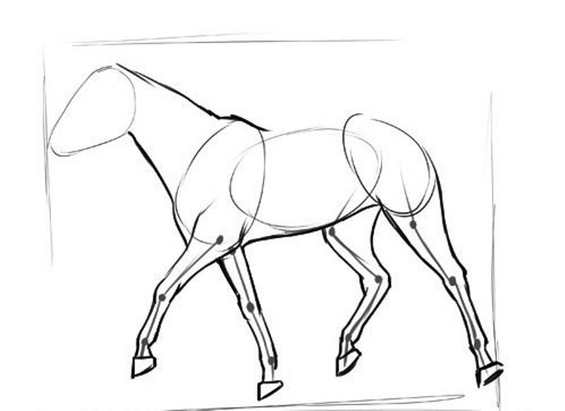 Рисовать животных в движении картинки