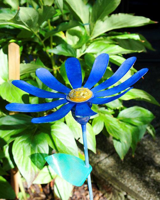 цветы синего цвета фото