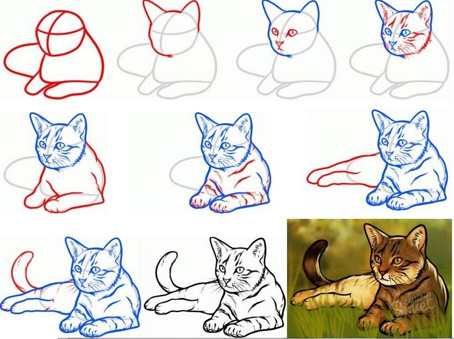 Анимация, картинки пошаговое рисование