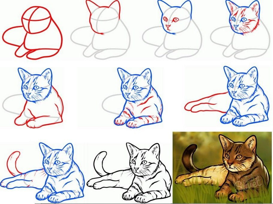 Картинки нарисовать пошагово