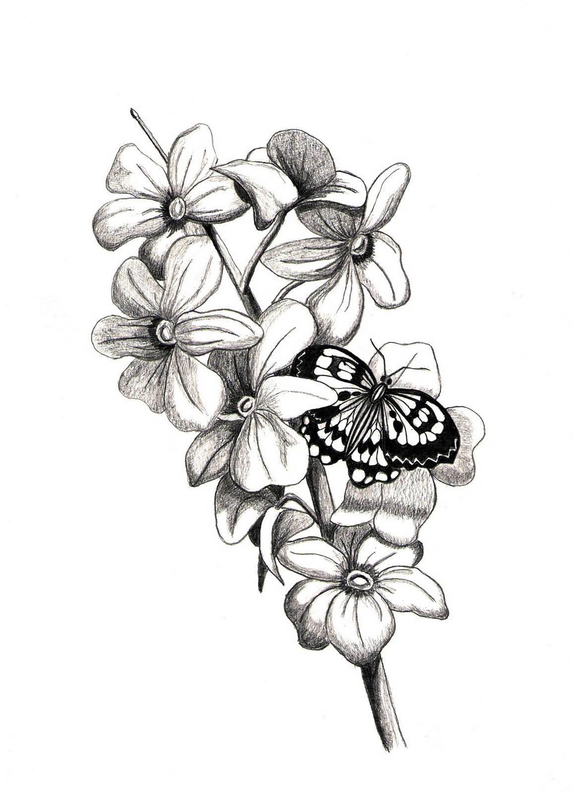 выбор красивые черно белые картинки цветы нарисовать шаржи невесту