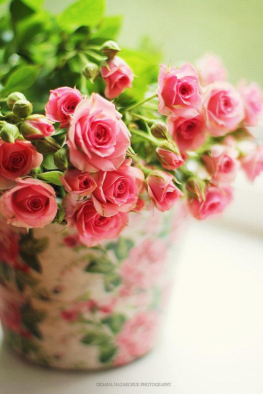 Картинки, открытки маленькие розы с днем рождения