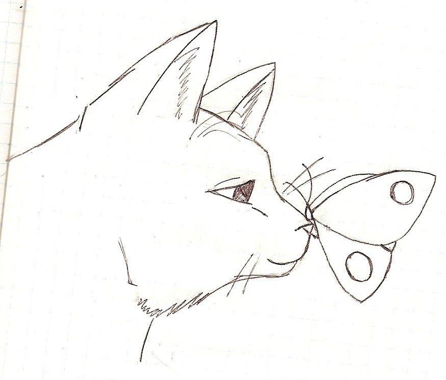 Рисунки котиков для срисовки карандашом