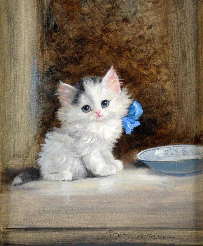 Котики картинки фото рисунки