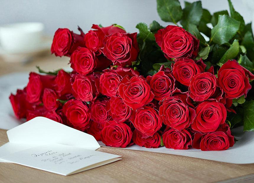 Розы фото день рождения