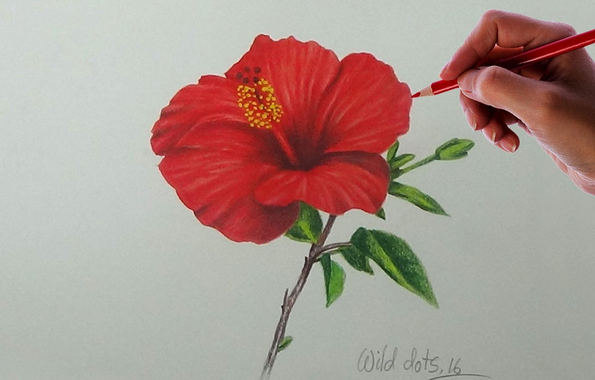 Chinese flowers drawings easy in pencil my site daot card chinese flowers drawings easy in pencil my site daot izmirmasajfo