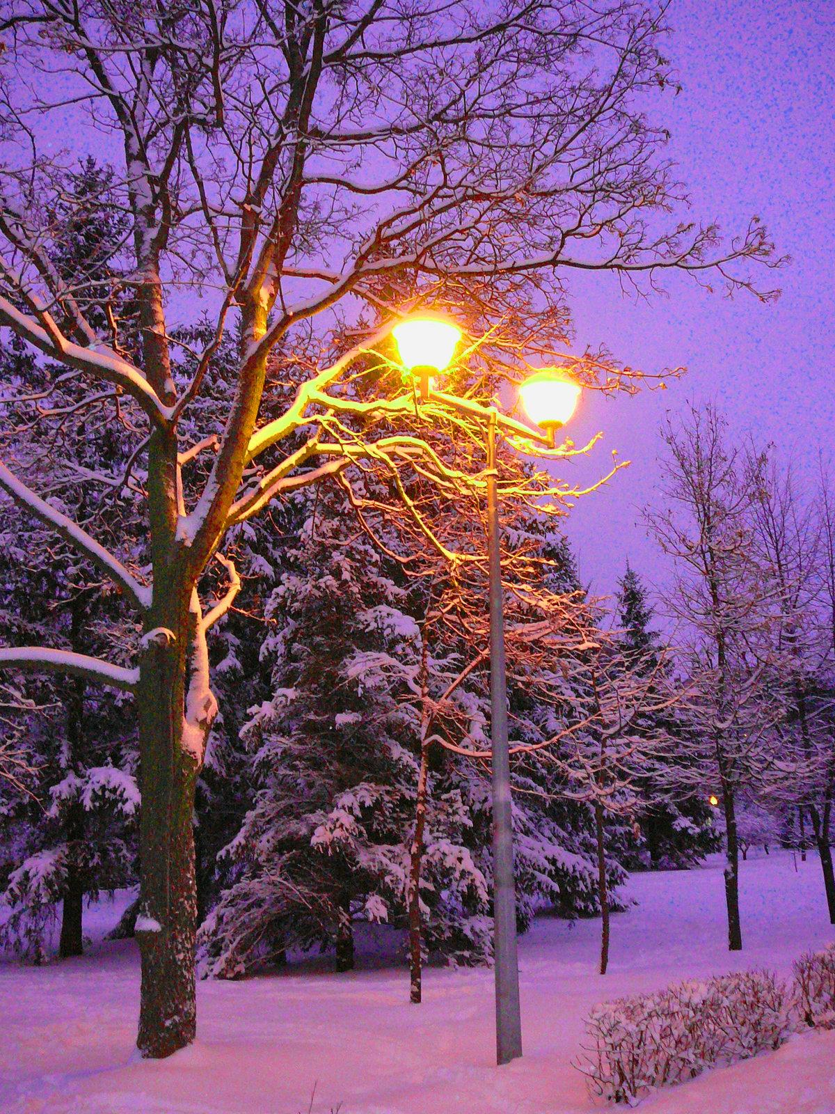 позволял картинка зимний вечер на телефон поставлен