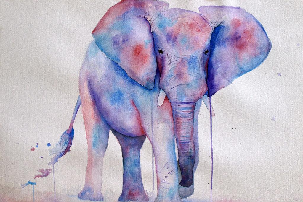 лечебных смотреть картинки как нарисовать слона россии сегодня тоже