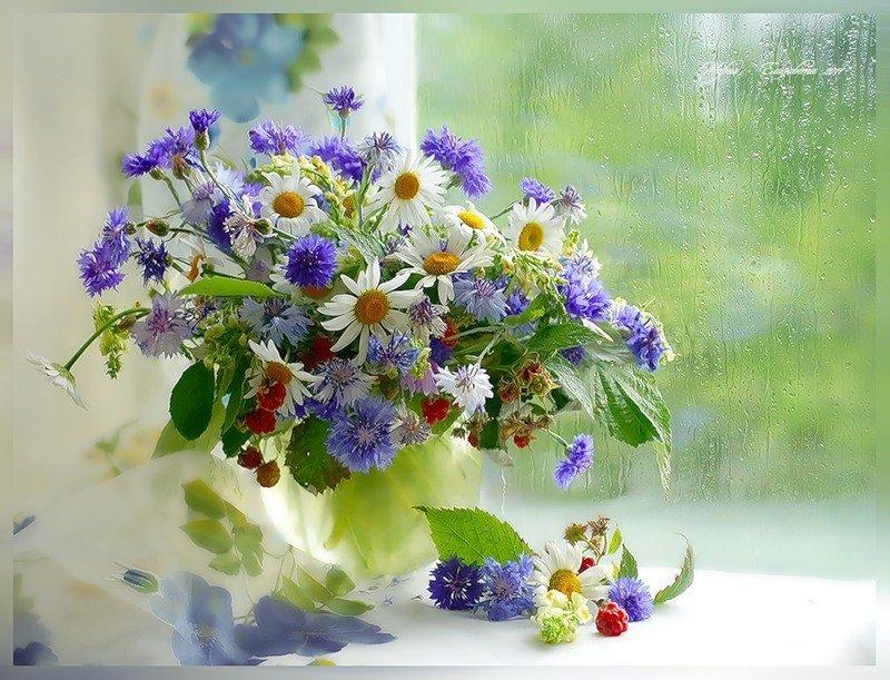 Марта, картинка с днем рождения полевые цветы