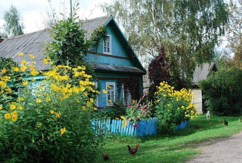 Родительский дом картинки фото
