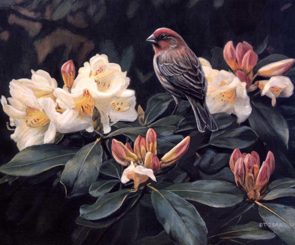 Цветы и птицы в картинах художников