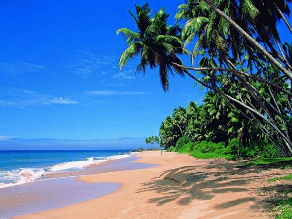 природа в индии - пляжи