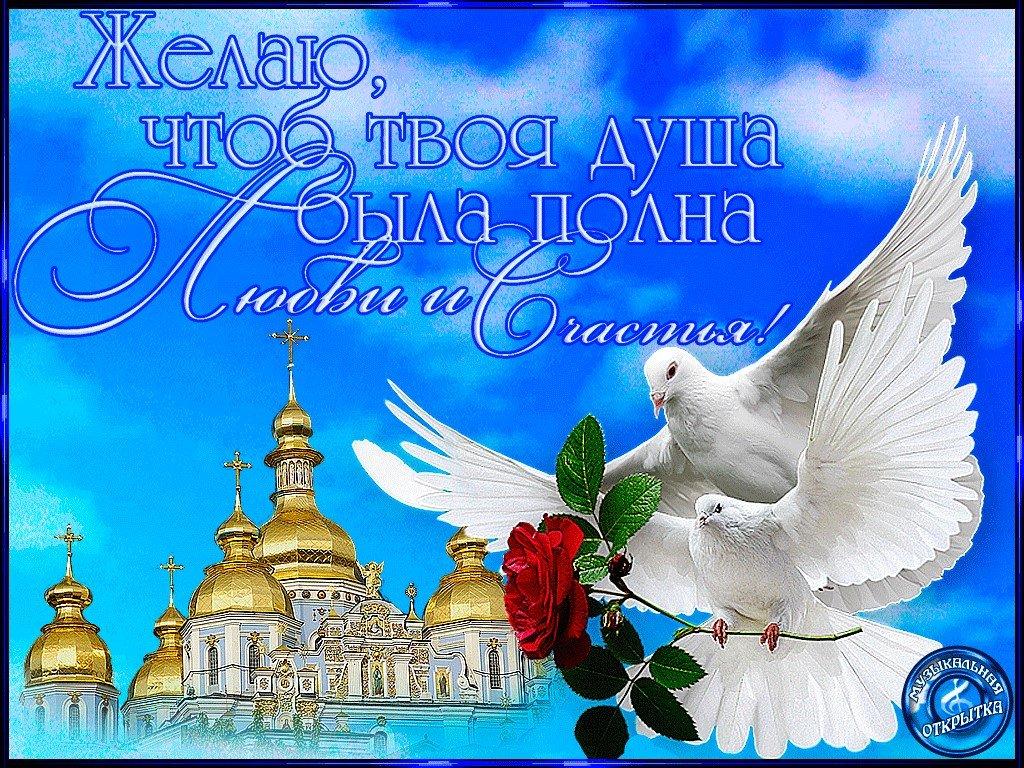 Слезы, открытка с днем мира и добра