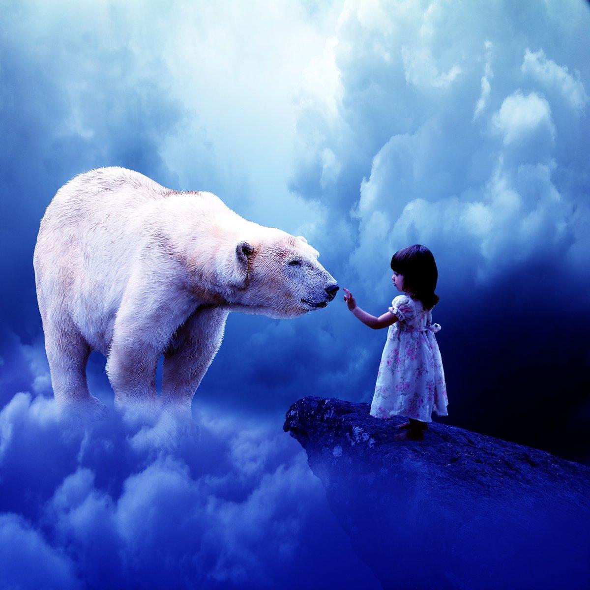 нам картинки белых медведей фэнтези почти