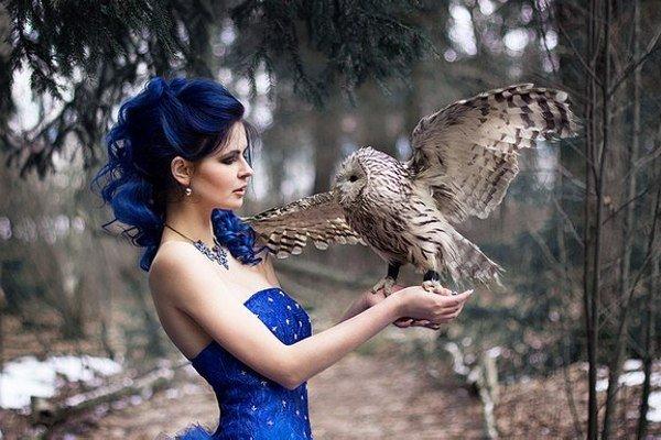 кронштадте при птица красивая в руках фото бесплатные обои для