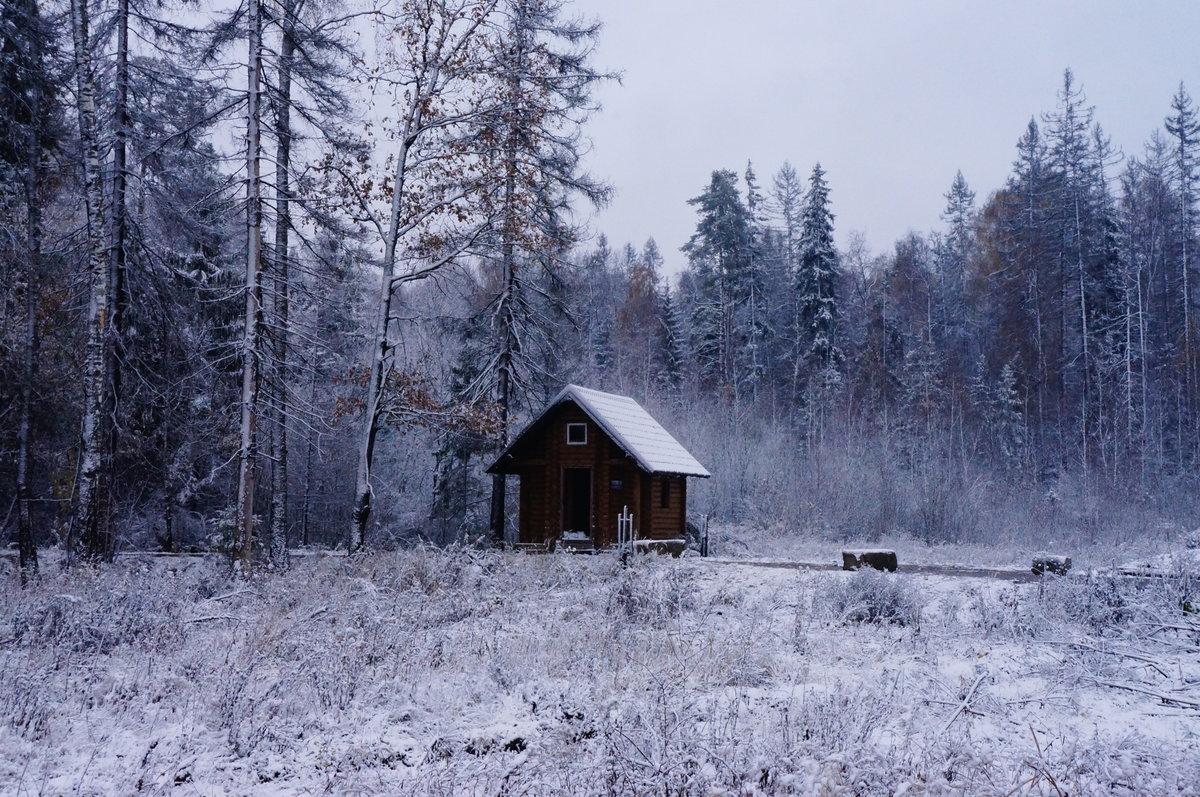 Фото избушки зимой