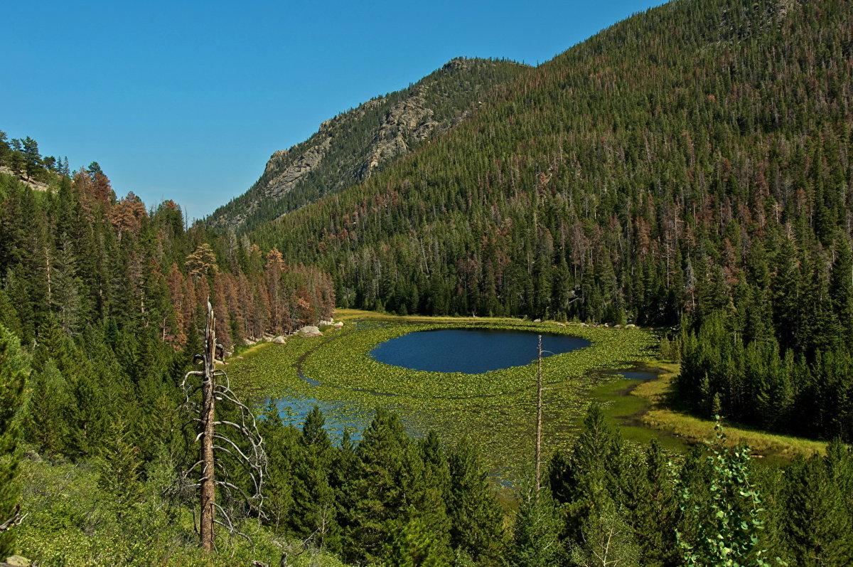 Скали́стые го́ры (англ. Rocky Mountains) — основной горный хребет в системе Кордильер Северной Америки, на западе США и Канады, между 60 и 32° с. ш.