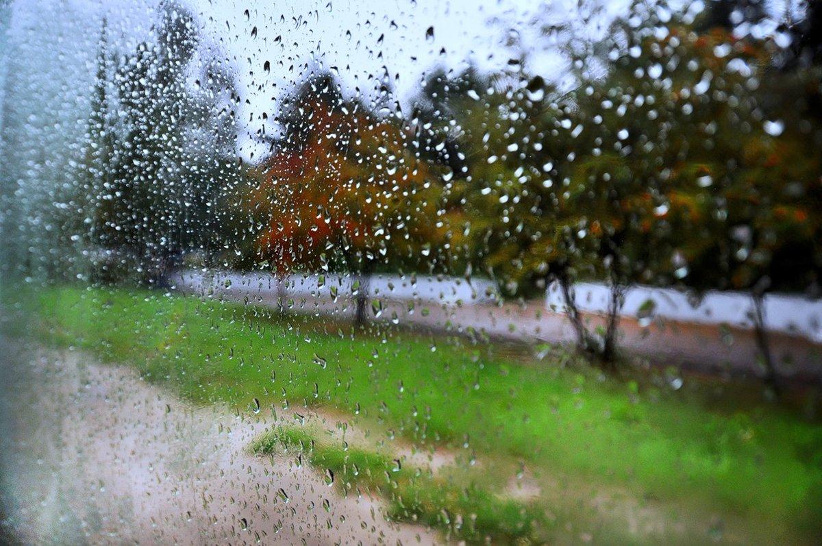 открытки льет дождь ландшафты