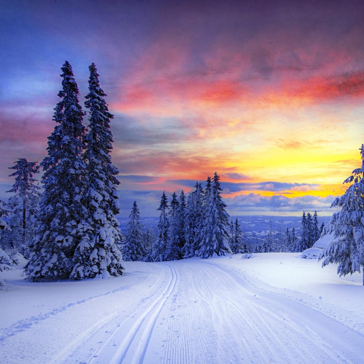 Картинки зимы по вертикали