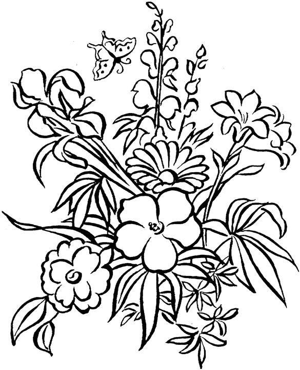 Февраля, смотреть картинки с цветами простые