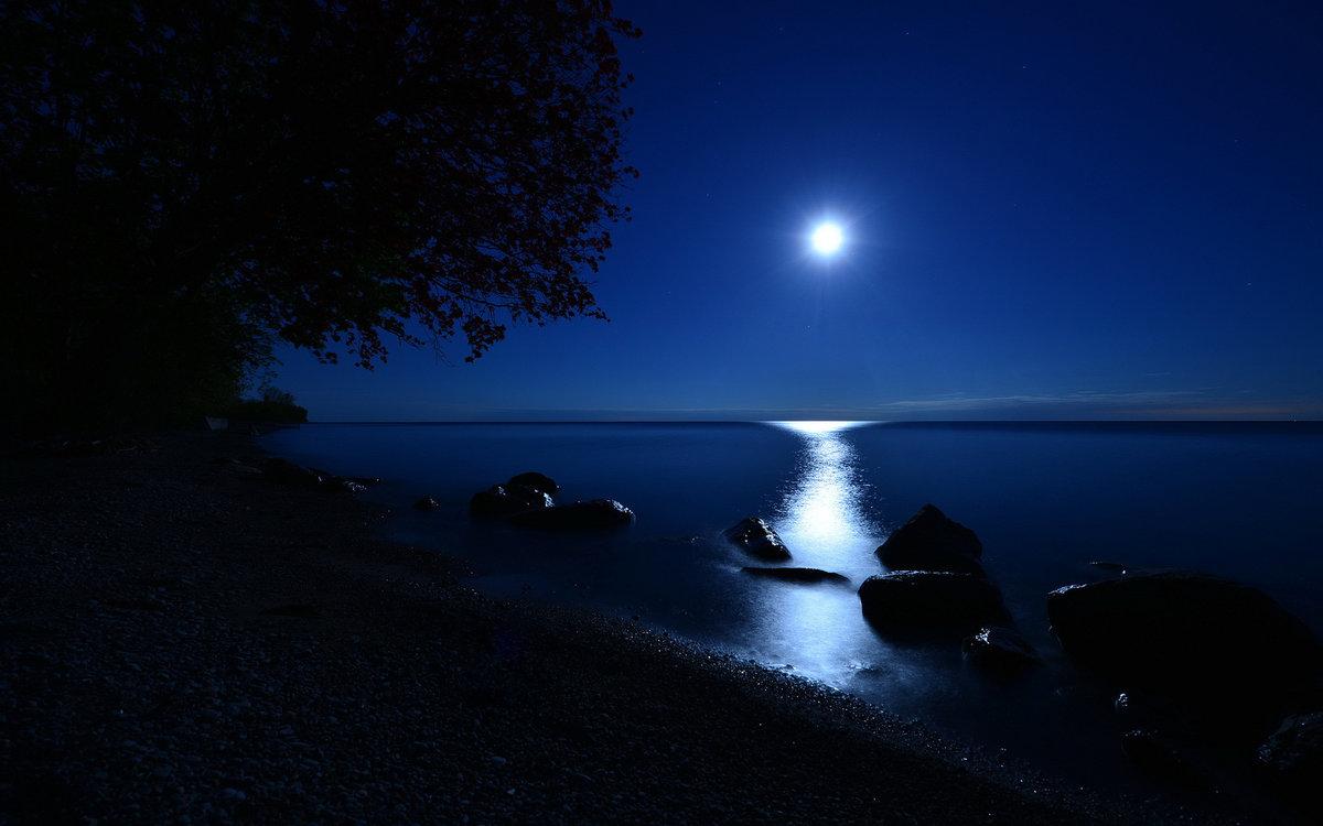 Фото в лунном свете