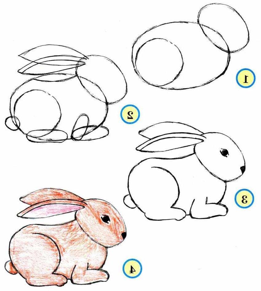 Именем, как рисовать зайца с открыткой