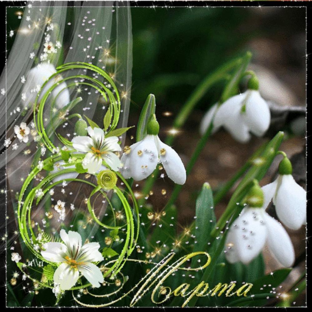 С 8 марта картинки с цветами, для