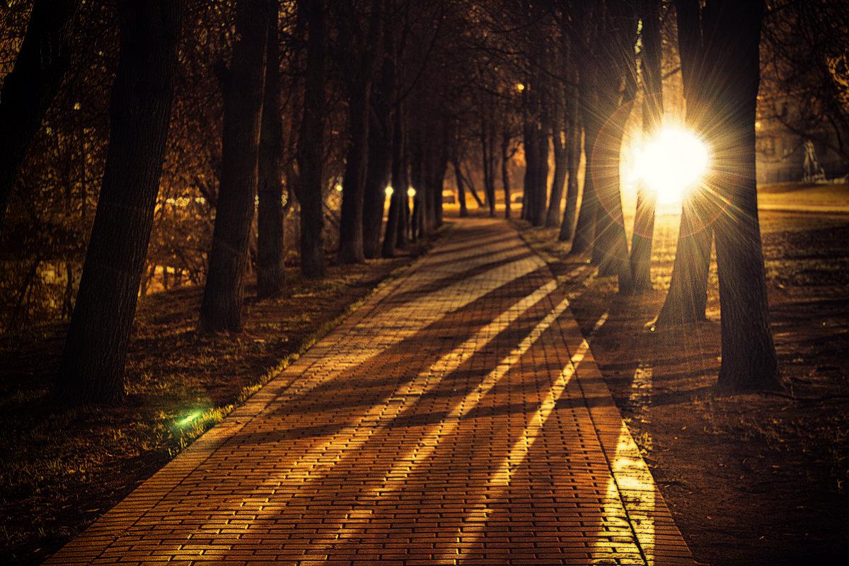 Юбилеем, картинки красивая ночь в парке