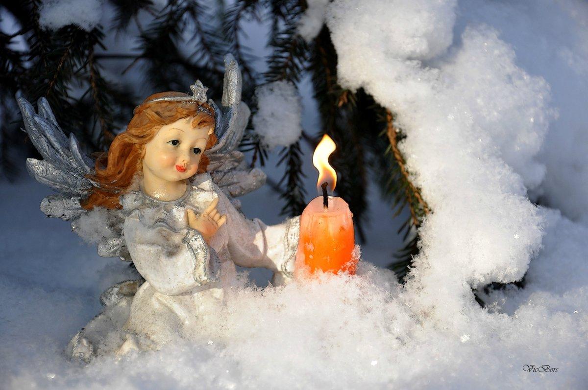сделала день снежных ангелов картинки стене самая популярная