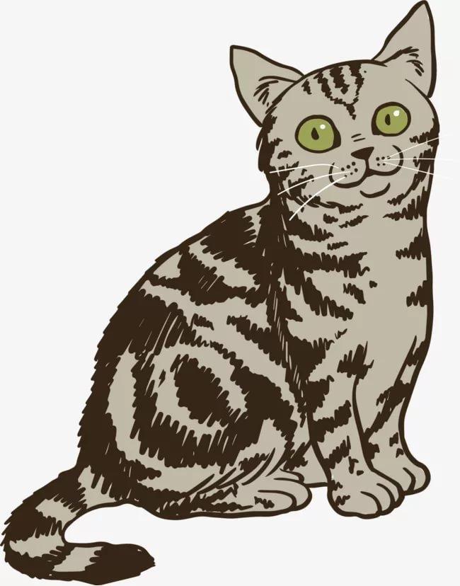 полосатый кот картинка на прозрачном фоне продукцией были