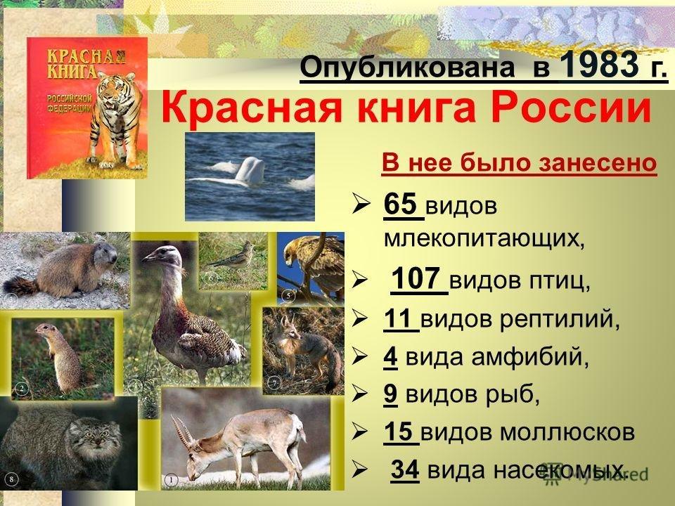 Картинки и информация кто есть в красной книги