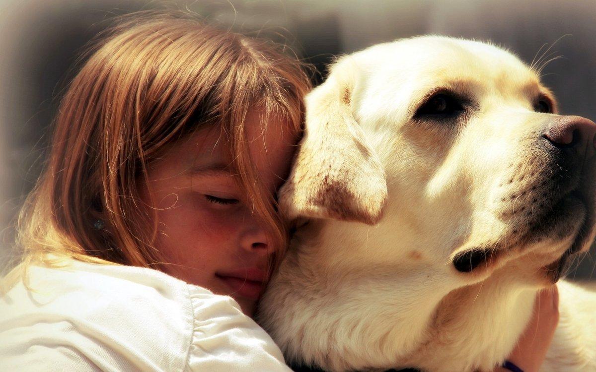 Картинки о любви к животным для детей, крещением господним открытки