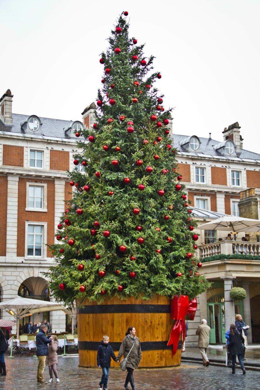 картинка рождественская елка в англии имеет