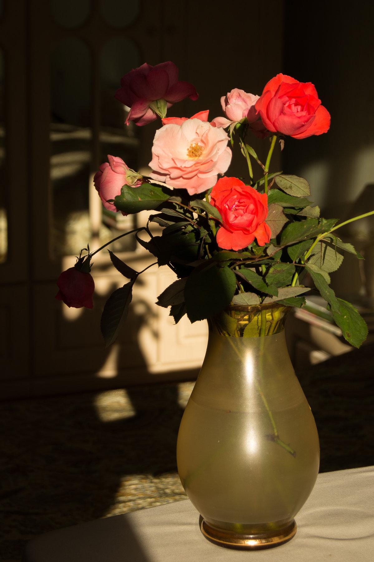 цветы розы фото в вазе музее размещены вёдра