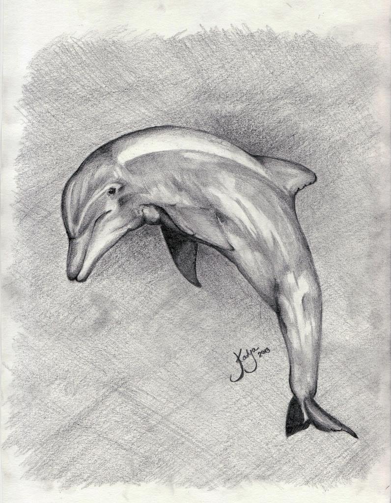 можно назвать рисунок с дельфином нарисовать очень