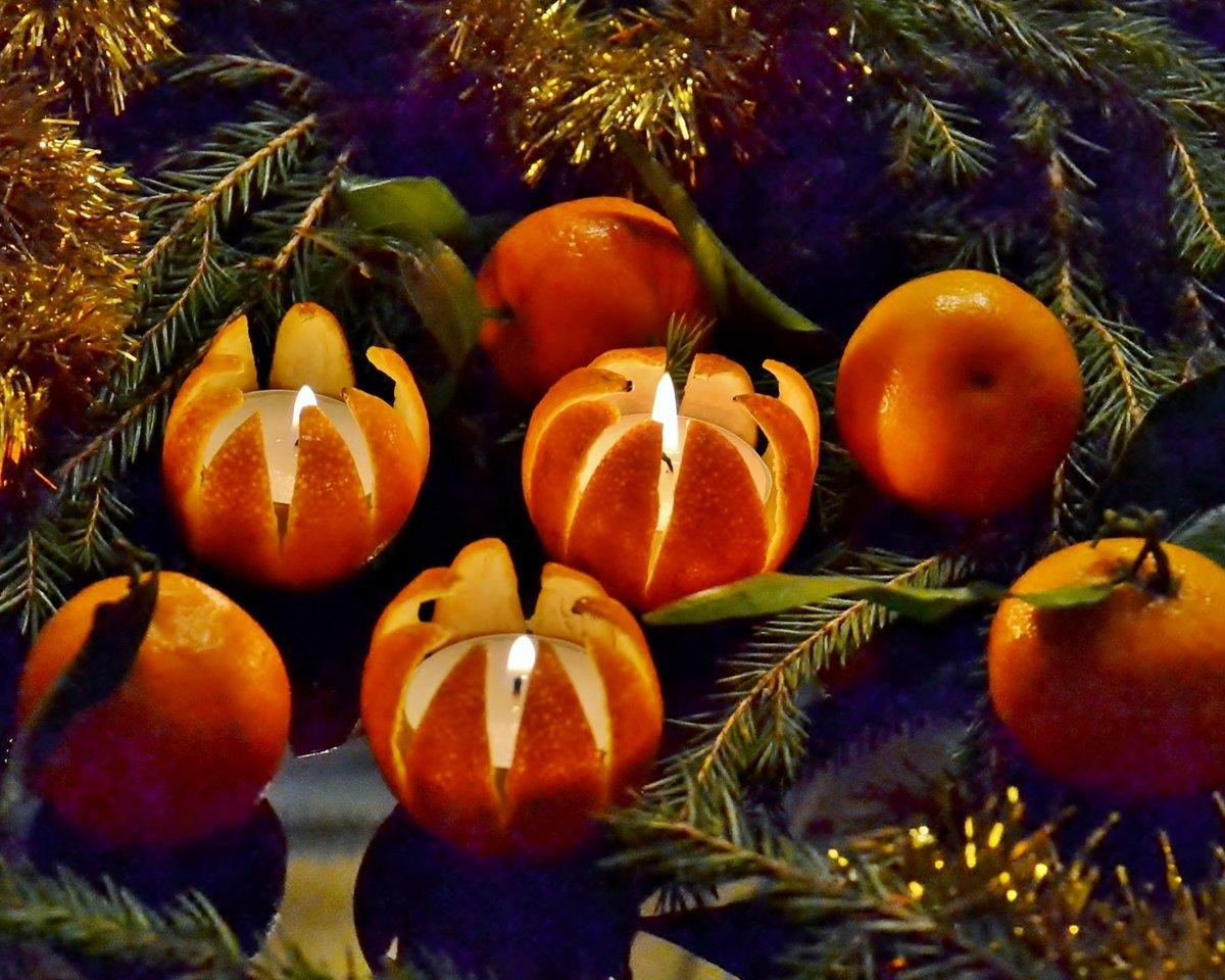 Черепаха открытки, открытка с мандаринами новогодняя