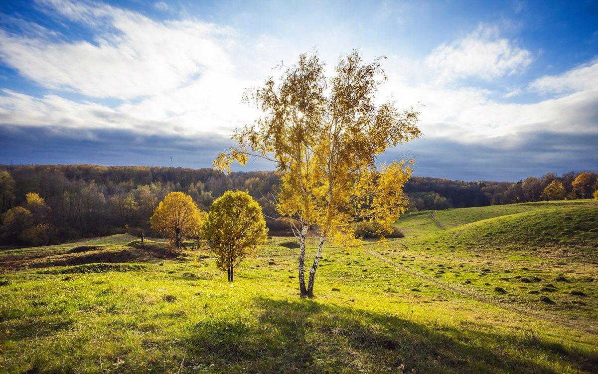 Надписью, картинки русской природы красивые