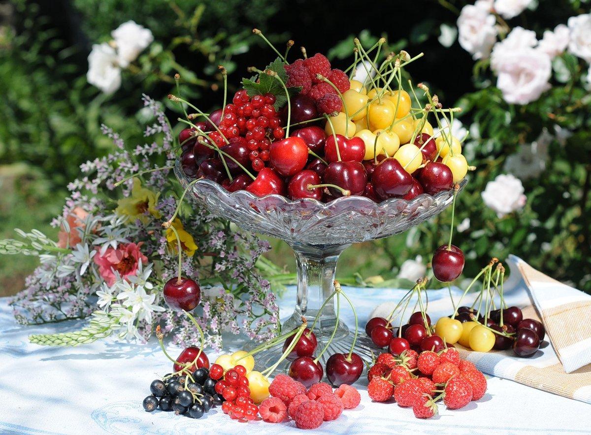 Открытки добрым, открытки фруктов и цветов хорошего дня