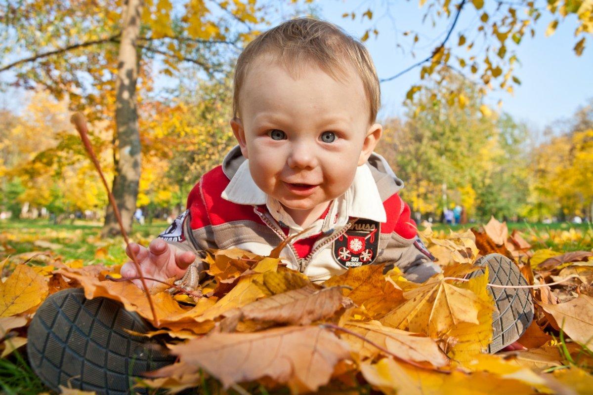 Картинки осень и дети