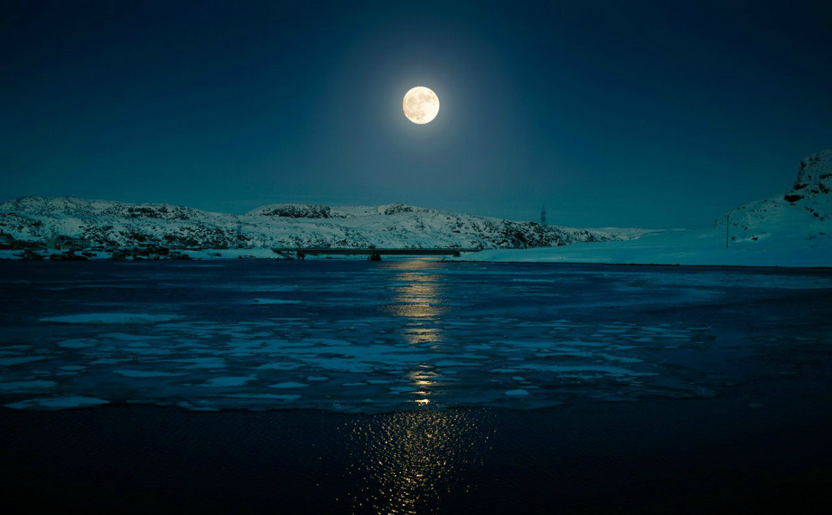 Лунная ночь фото и картинки