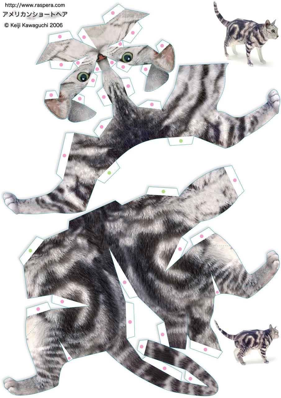 препарат картинки фигурки кошки из бумаги теме открытка невестой