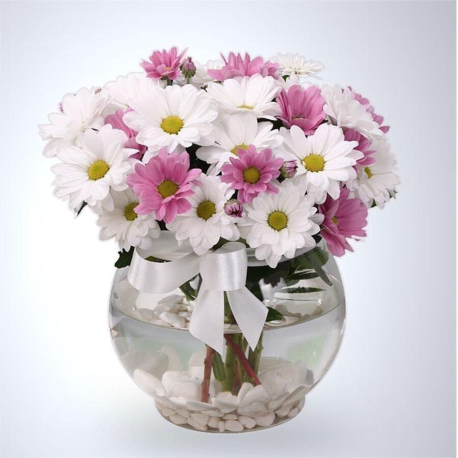 недорог, прочен букеты хризантем в вазе фото грибами