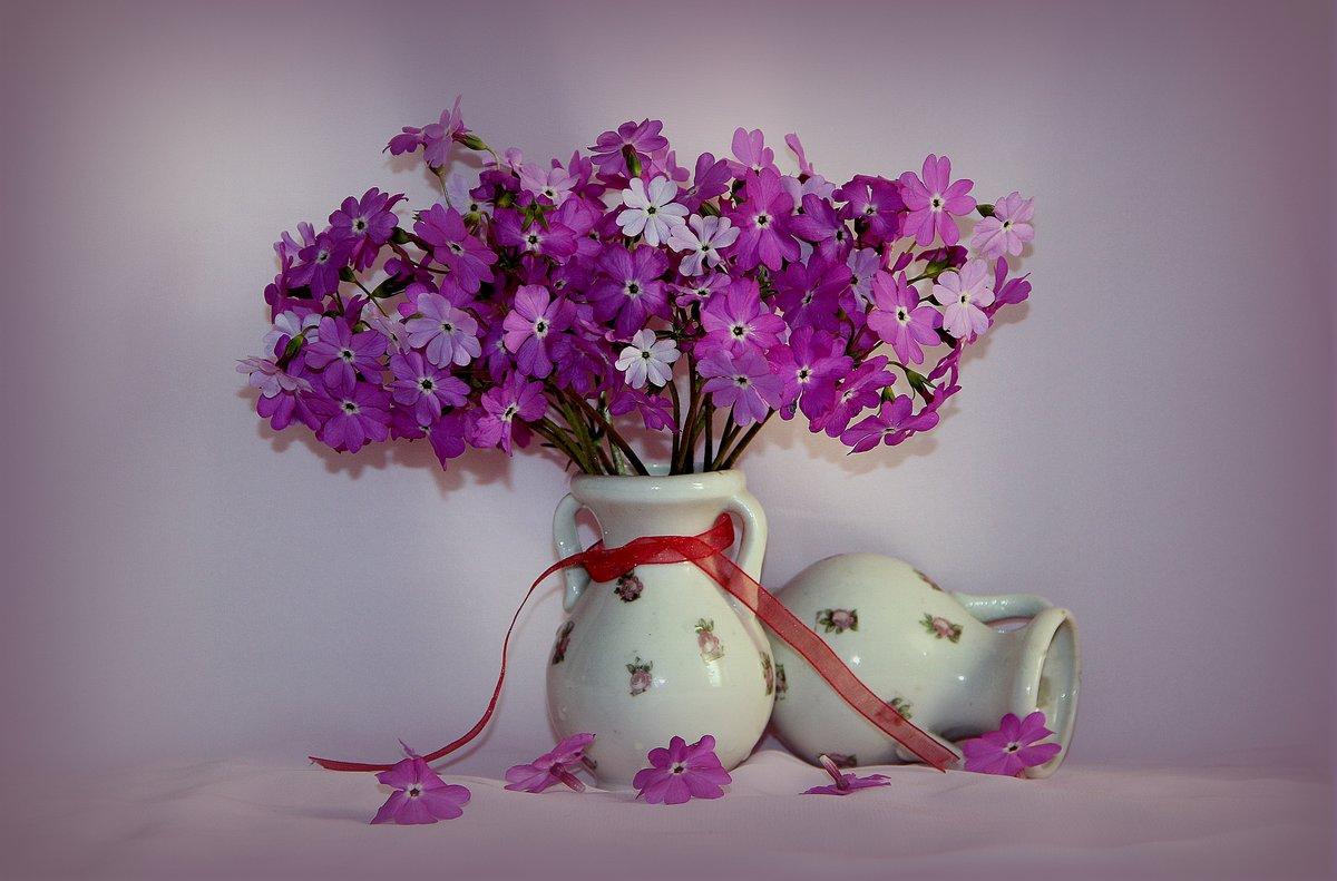 отец фотонатюрморты цветы для фотопечати арбуз красиво