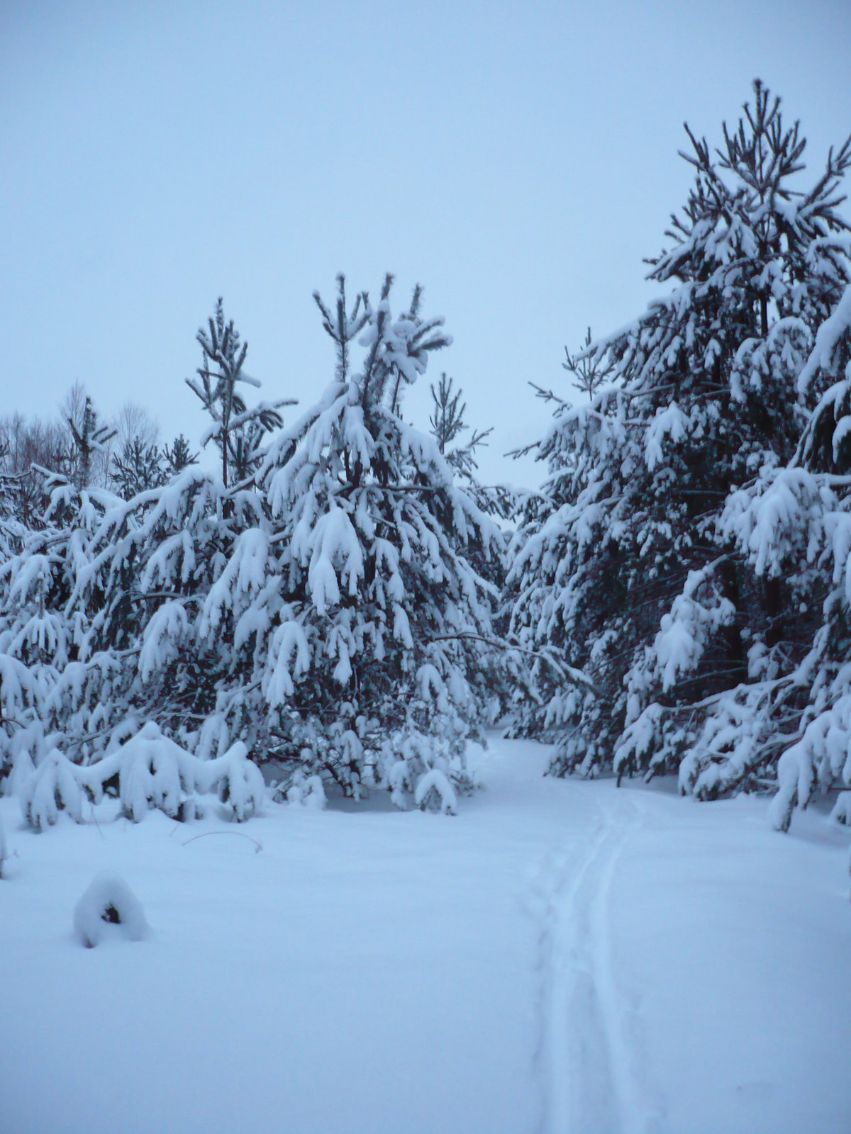 числе первых непрофессиональные фото зима только выложить начинку